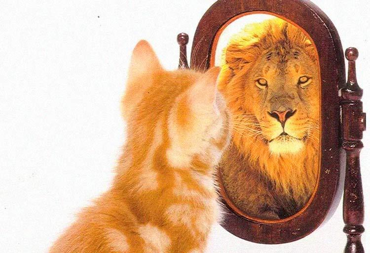 terapia para mejorar autoestima