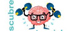 neurofeedback-biofeedback-egg-madrid-terapia